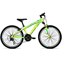 Focus Raven Rookie Green 24 x 310 mm