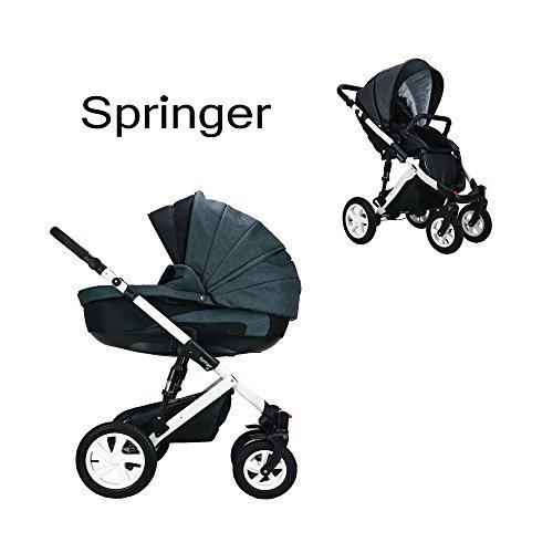 Springer 2 in 1 Kombi Kinderwagen Baby Erstausstattung Buggy Sportwagen Kombikinderwagen Set CityPlus (3. Dubai)