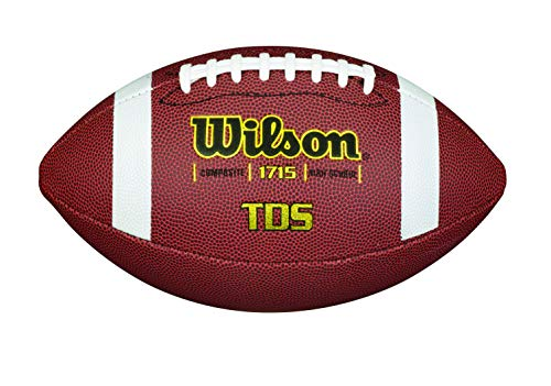Wilson Traditional Composite Football
