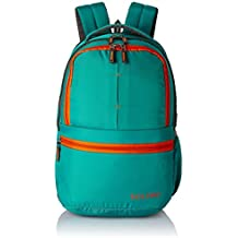 Solimo 25 Ltrs Casual Backpack