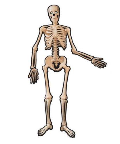 Skelett-Motiv, 2 Stück ()