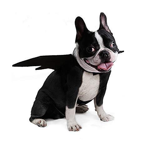 Halloweenkostum Hund Fasching Und Karneval