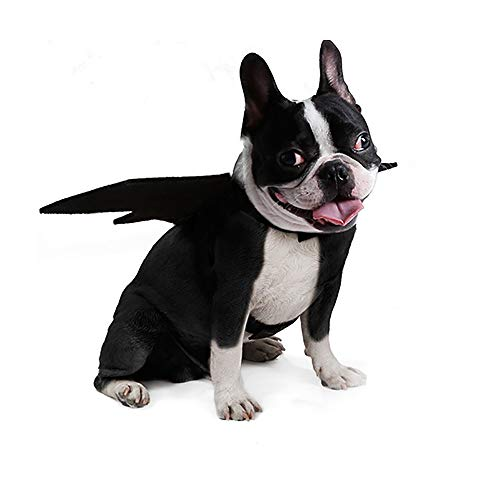 (YCGG Katze Bat Wings Kostüm,Tier Haustier Hund Katze Fledermaus Vampir Halloween Kostüm Outfit Flügel(M,Schwarz))
