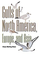 Gulls: Of North America, Europe, and Asia by Klaus Malling Olsen (2004-12-05)