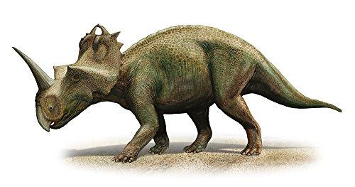 Sergey Krasovskiy/Stocktrek Images – Centrosaurus apertus a prehistoric era dinosaur. Photo Print (99,06 x 52,32 cm)