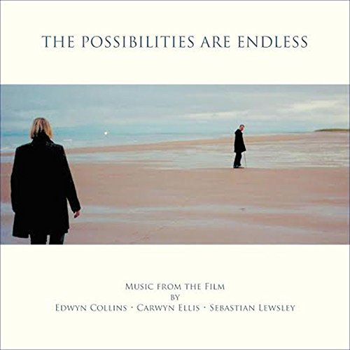 the-possibilities-are-endless-ost