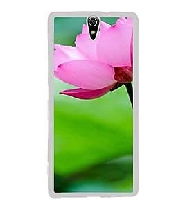 ifasho Designer Back Case Cover for Sony Xperia C5 Ultra Dual :: Sony Xperia C5 E5533 E5563 ( Wedding Gifts Ny Kochi Thanjavur Rajnandgaon)