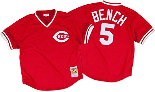 Johnny Bench Cincinnati Reds Mitchell & Ness Authentic 1983 Batting Pratice Jersey
