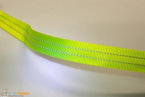 LED Leuchthalsband Basic 3 per USB aufladbar, Grün, Größe M - 6
