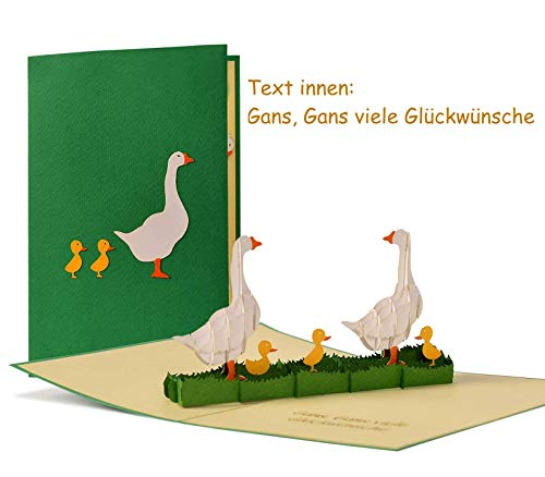 """Witzige Geburtstagskarte mit Gänsemotiv und Text\""""Gans, Gans viele Glückwünsche\"""", humorvolle Glückwunschkarte, origineller Gutschein für z.B. einen Ausflug ins Grüne, G18"""