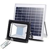LL Solar Lampensicherheitlichter Outdoor Wasserdichte Auto-InduktionsSolar Put Lighting mit Fernbedienung,20W