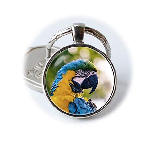 d Aras Tropical Schlüsselanhänger Key Ring Aras Schlüssel Kette ()