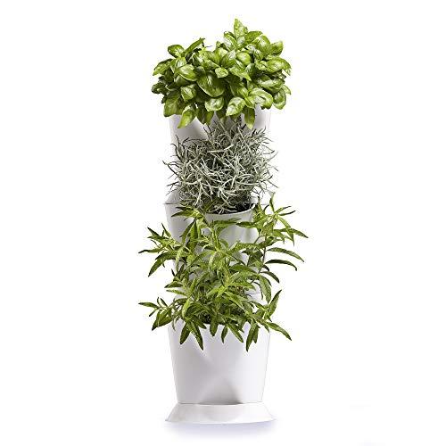 Minigarden 1 Juego Corner para 3 Plantas
