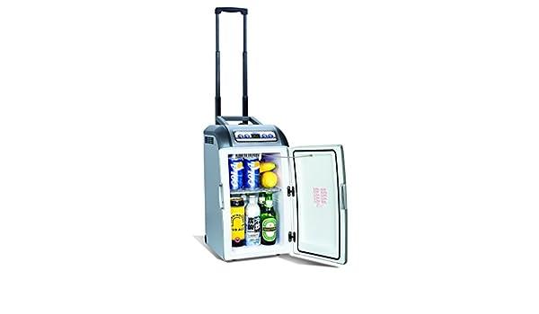 Mini Kühlschrank Zum Mitnehmen : Mini kühlschrank auf rädern mit teleskopstange l amazon