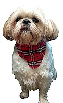 Red Nylon Dog Collar with Scarf, Choose your Size