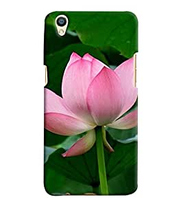 Printvisa Pink and white lotus With Leaves Background Back Case Cover for Oppo F1 Plus::Oppo R9