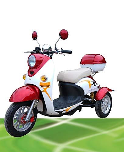 "Elektromobil Sam 2"" Elektro Scooter Seniorenmobil Dreirad Elektro Roller Elektrorollstuhl"
