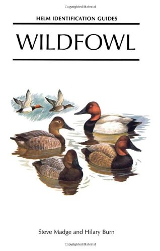 Wildfowl: An Identification Guide to the Ducks, Geese and Swans of the World (Helm Identification Guides) -