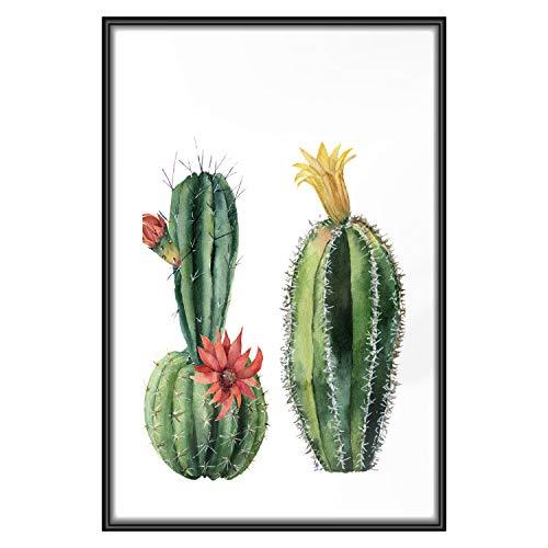 murando - Poster Kakteen - 40x60 cm - Kunstdruck - Wandbild - Print - Bilder - Bilderrahmen - Pflanzenmotiv Natur b-B-0301-ao-a
