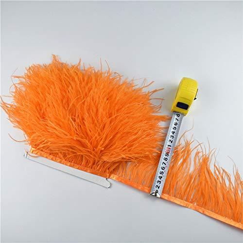 SHFives 1 mt 5 mt 10 Meter straußenfeder Rock randstreifen 10-15 cm straußenfeder Band Federn für Handwerk DIY Kleidung schmuck Machen, 13 orange, 5 - Mode Kostüm Schmuck China