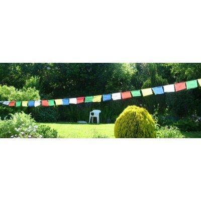 Bandiere di preghiera tibetane set; rotolo di 25bandiere-taglia 26cm da 23cm.lunghezza totale da 650cm