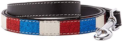 Mirage Pet Products Patriotische Ice Cream Halsbänder Knochen mit 3/4-Zoll Match Leine für Hunde -