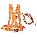 Kits de arnés de seguridad, arnés de seguridad para la detención de caídas, 6 stypes Arnés de escalada ajustable para...