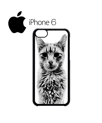 Cat Kitten Angry Grumpy Meow Swag Mobile Phone Case Back Cover Hülle Weiß Schwarz for iPhone 6 Black Schwarz