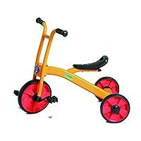 Andreu Toys 90003 Endurance Trike Toy, Multicolour, 75 x 58 x 49 cm