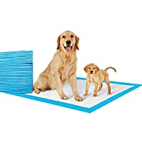 Mumoo Bear Pet Pee Pads Disposable, Blue, 60 X 60cm, Mb-005, 40Pcs