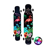 Completi Skateboard da 42 Pollici   PRO Longboard   Crociera, Carving, Danza, Stile Libero   con luci Colorate Lampeggianti Illuminate   per Bambini Ragazzi Ragazze Principianti giovanili