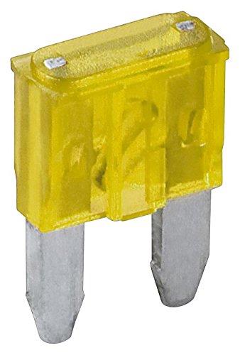 Fixpoint 20391 Kfz-Sicherungssortiment Mini, 20 A, Gelb (6-er pack) 20a Pack