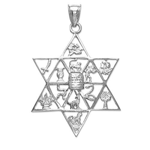 Kleine Schätze - 925 Sterling Silber David stern mit Zwölf Stämme Israels Anhänger Halskette (Kommt mit Eine 45 cm Kette) (Schatz Stamm)