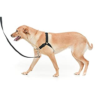 Chaos NON PULL DOG HARNESS - ADJUSTABLE DOG HARNESS (Small, Red) 15