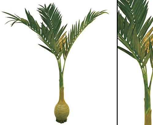 Palme künstlich, mit Knollenstam, Höhe 240cm – künstliche Palmen Südseepalmen Dekopalme