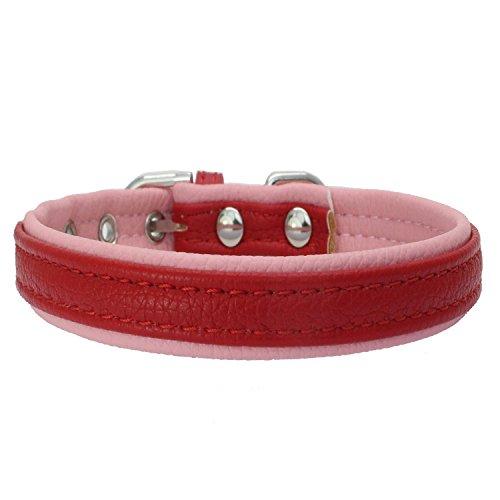 Dogs Kingdom hochwertigem weichem Leder doppelt Leder gepolstert Hundehalsband Puppy Pet Halsband mit verstellbare Schnalle Schließung (Verstellbare Schnalle Schließung)