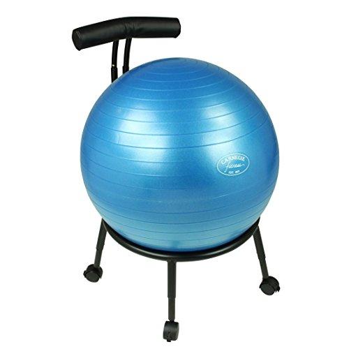 carnegie-ball-chair-brostuhl-sitzball-kombi-mit-lendenwirbelsttze-5-bremsbare-rollen-voll-hhenverste
