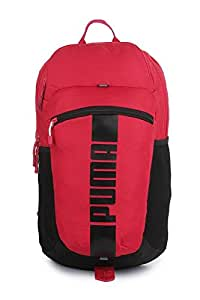21 ltrs Pink Laptop Backpack (7440108)