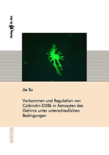 Vorkommen und Regulation von Calbindin-D28k in Astrozyten des Gehirns unter unterschiedlichen Bedingungen (Medizin)