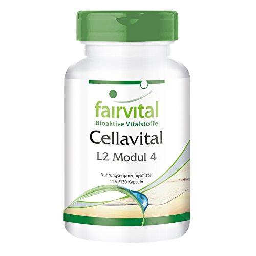 Cellavital mit Acetyl-L-Carnitin, Taurin, L-Prolin, Coenzym Q10 (Ubichinon), Lysin, vegan, 120 Kapseln