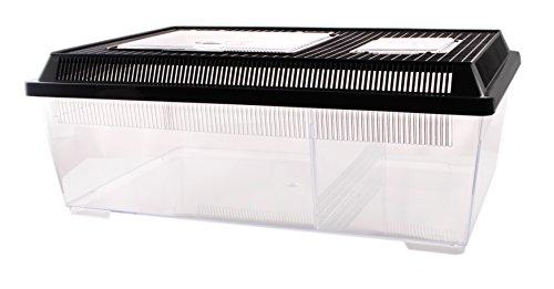 Plastikterrarium Flat Box Größe II