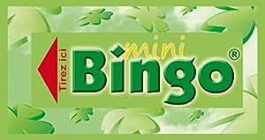 500 Tickets Mini-Bingo® - Vert