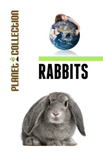 Rabbits: Picture Book (Educational Children's Books Collection) - Level 2 (Planet Collection 59) (English Edition) (Animal Kaninchen Planet)