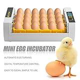 24 Incubatore Uova per la tornitura di pollo Pollame Quaglia Turchia Uovo automatico