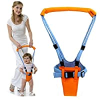 Ankidz Toddler Learning Walker Suitable for Baby Children 0-2 Years Old Swings & Chair Bouncers