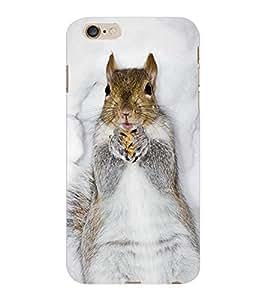 ColourCraft Cute squirrel Design Back Case Cover for APPLE IPHONE 6 PLUS
