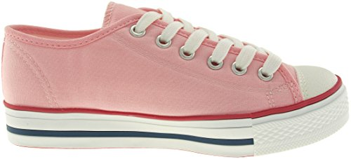 maxstar C1 6-holes Casual Leinwand Low Sneakers Schuhe C1-Pink