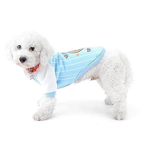 Ranphy Baseball Veste pour chien pour chien chat Animal domestique Swearshirt Yorkshire Veste Automne Chien Apparel Chihuahua Vêtements Costume