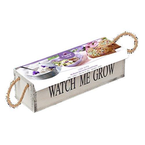 geschenkartikel-shopping-pflanz-set-essbare-blumen-violett-holzkasten-watch-me-grow-geschenkset