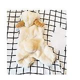 LVRXJP12 Hundekleidung Samt Vierbeinige Kleidung Baumwolle Thickening Schafe Modellierung schöne Transfiguration Warmhalten Beige Universal, m